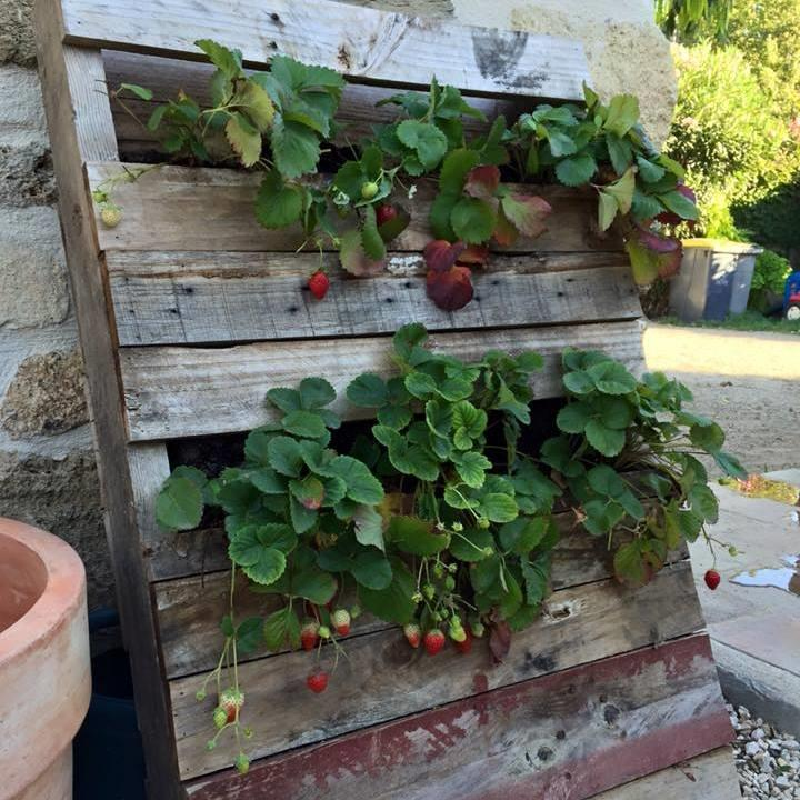 Pallet Vertical Planter For Your Garden 1001 Pallet Ideas