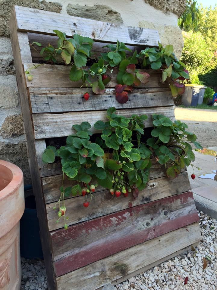 reclaimed pallet vertical planter - Garden Ideas With Pallets